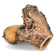 Knuckle Bone